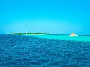 Surf Inn Maldives PayPal Hotel Maldives Islands