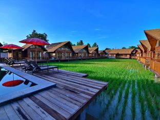 rice farm villa