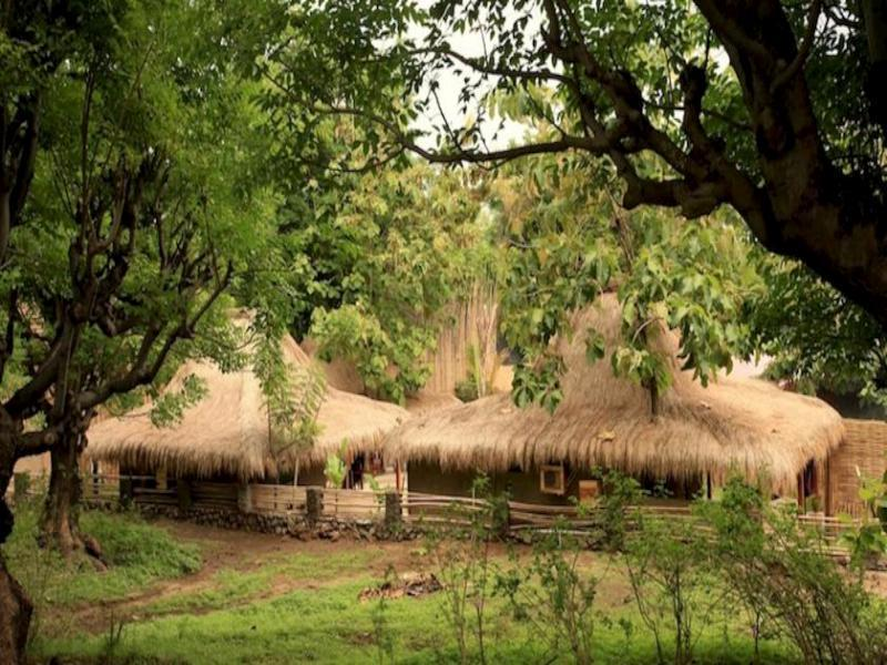 Jati Village - Hotels and Accommodation in Indonesia, Asia
