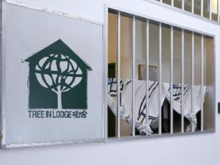 Tree In Lodge Hostel