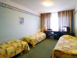 Hotel Dzingel Tallinn - Gæsteværelse