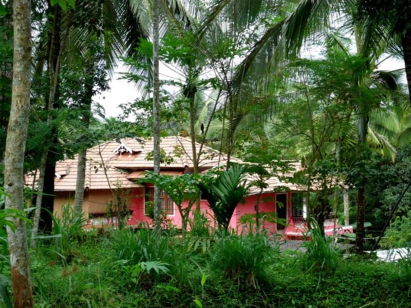 Spice Garden Farm House - Wayanad