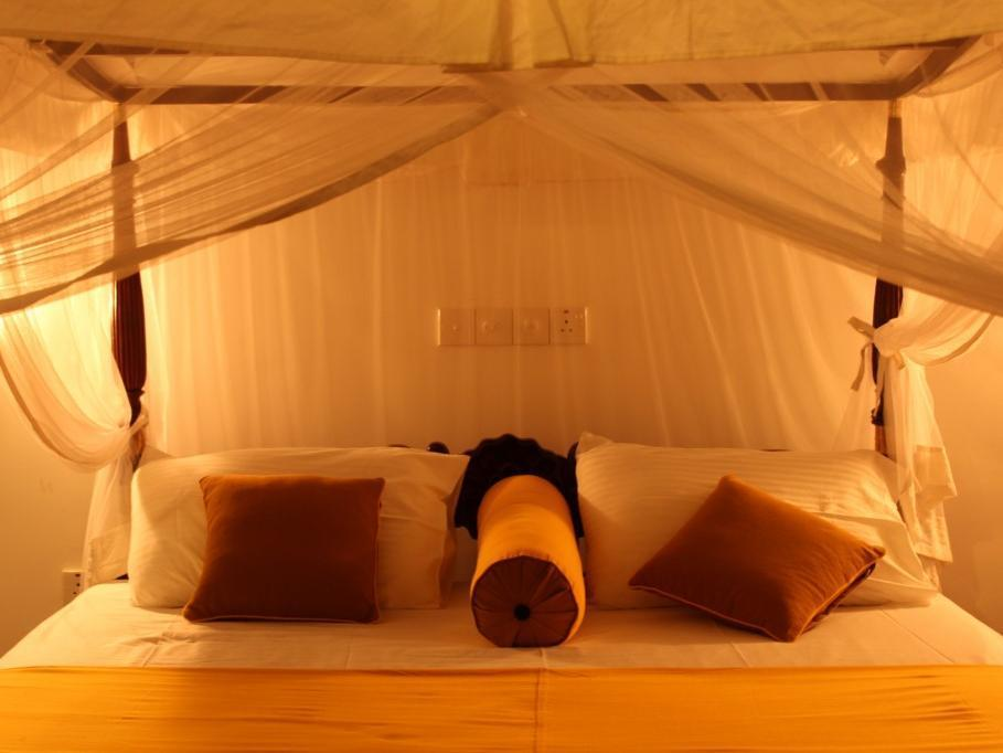 Refresh Cabana Garden - Hotels and Accommodation in Sri Lanka, Asia