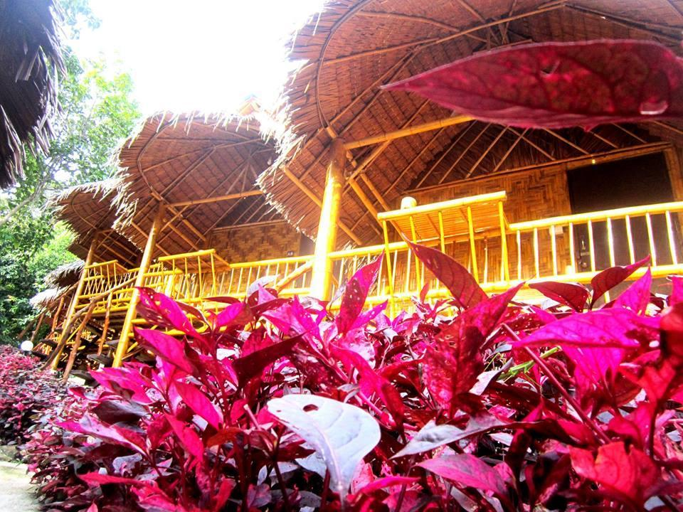 Phi Phi Hill Bamboo Bungalow - Hotels and Accommodation in Thailand, Asia
