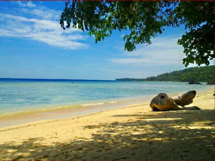 Karaoke Treasure Island