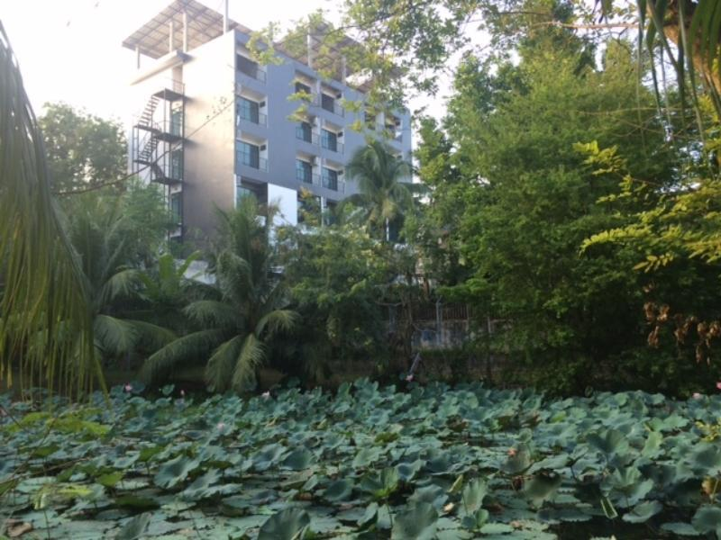 S1 @ Phuket Apartment Service - Hotels and Accommodation in Thailand, Asia