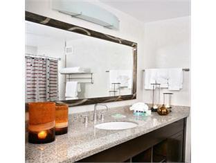 Holiday Inn City Centre Hotel Chicago (IL) - Bathroom