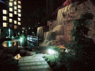 Shanghai Howard Johnson All Suites Hotel Shanghai - Waterfall