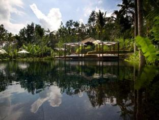 Kayumanis Ubud Private Villa & Spa Балі - Басейн