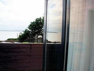 White Sands Hotel Dublin - View
