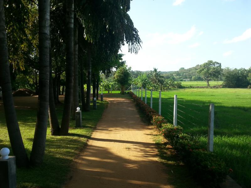 Triangle Holiday Inn - Hotels and Accommodation in Sri Lanka, Asia