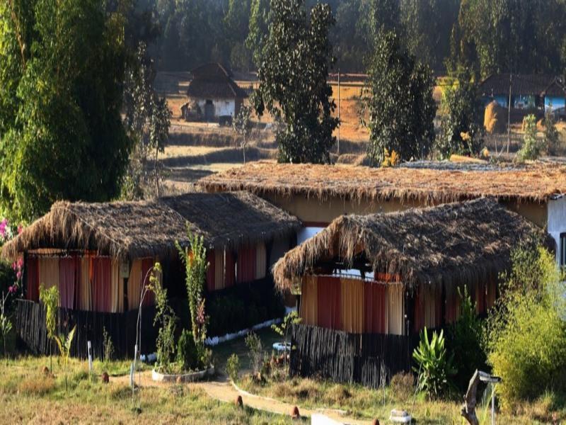 Kanha Eco Lodge - Kanha