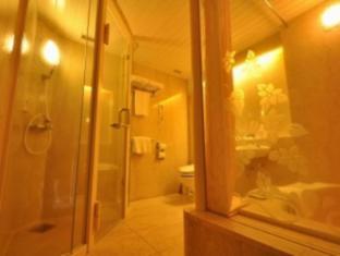 hotel Hotel Daihakone