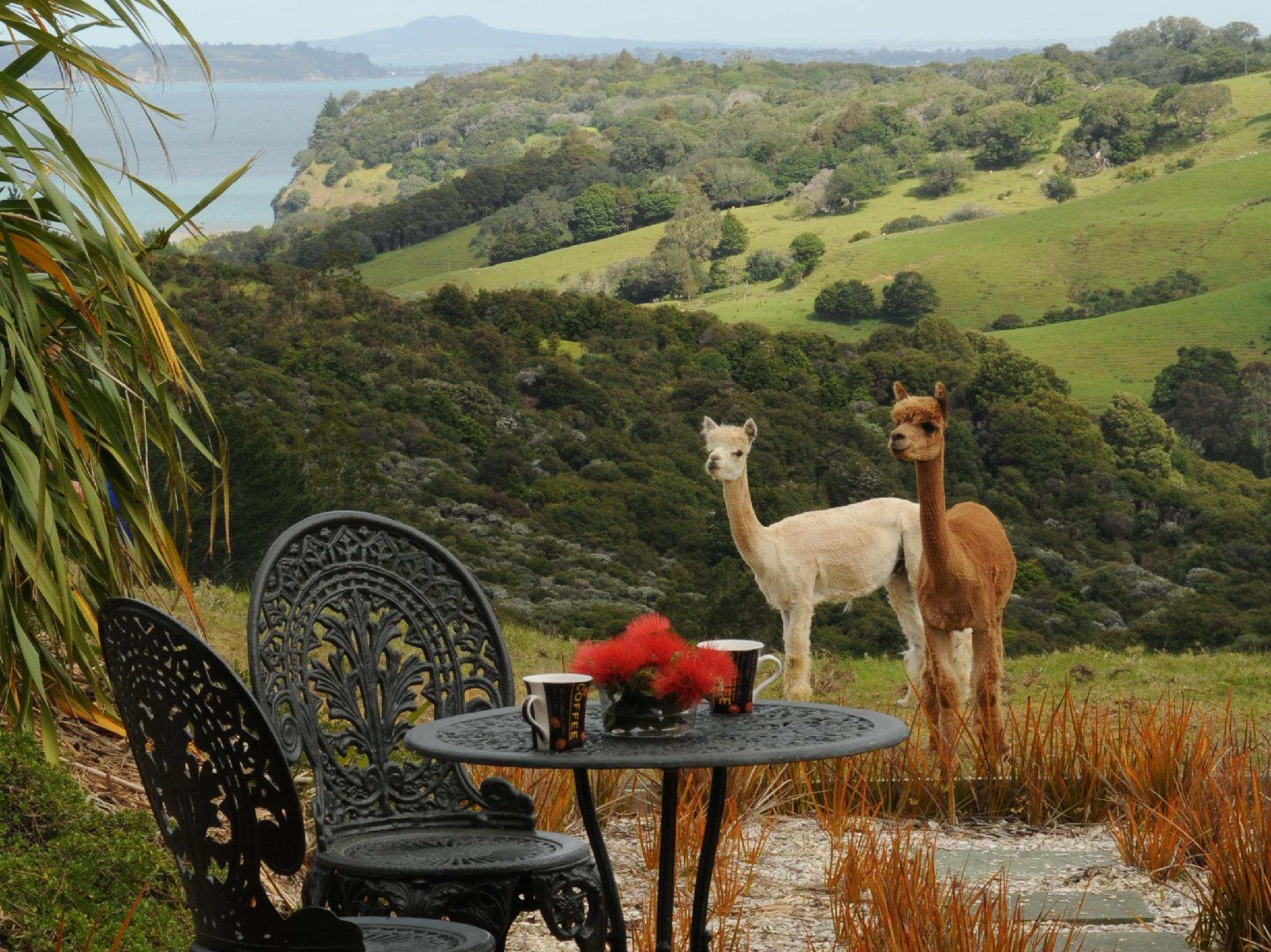 Mahurangi West Wing - Luxury Bed and Breakfast - Hotels and Accommodation in New Zealand, Pacific Ocean And Australia