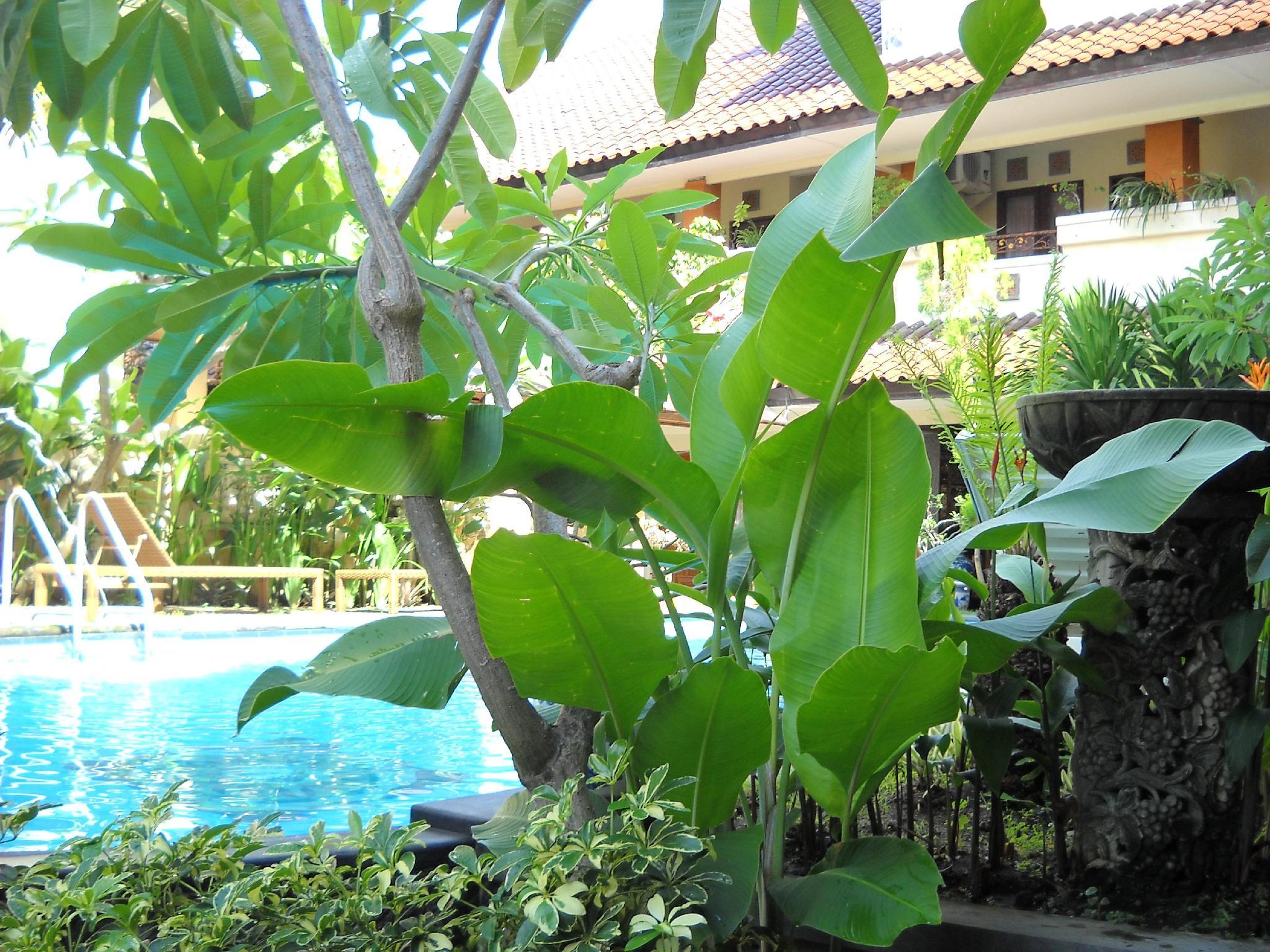 Hotell Bali Sorgawi Hotel