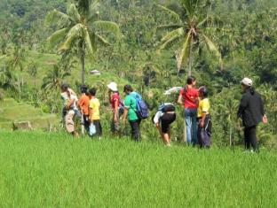 Rambutan Lovina Hotel Bali - Ümbrus
