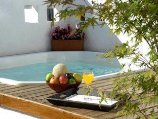 Melia Recoleta Plaza Hotel Buenos Aires - Swimming Pool
