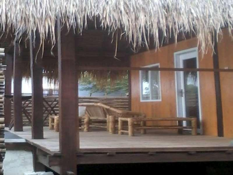 Pine Tree Hostel and Cottage - Hotels and Accommodation in Indonesia, Asia