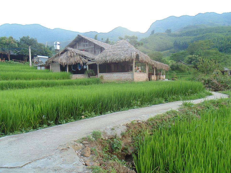 Tavan Ecologic Homestay - Sapa