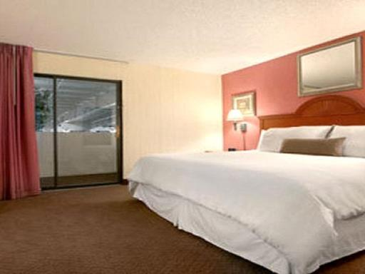 Plaza Hotel and Suites hotel accepts paypal in Pine Bluff (AR)