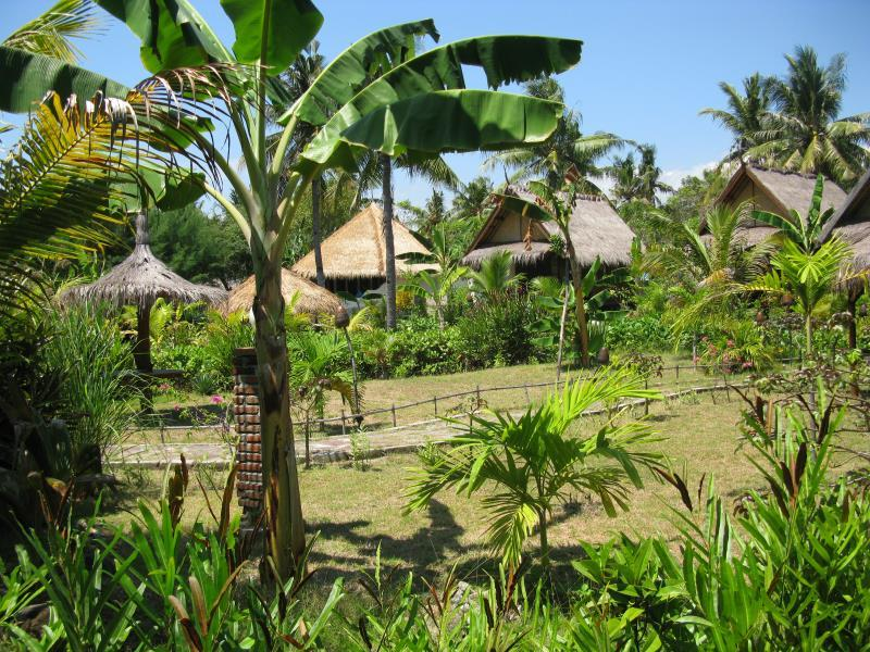 Adeng-Adeng Bungalows - Hotels and Accommodation in Indonesia, Asia