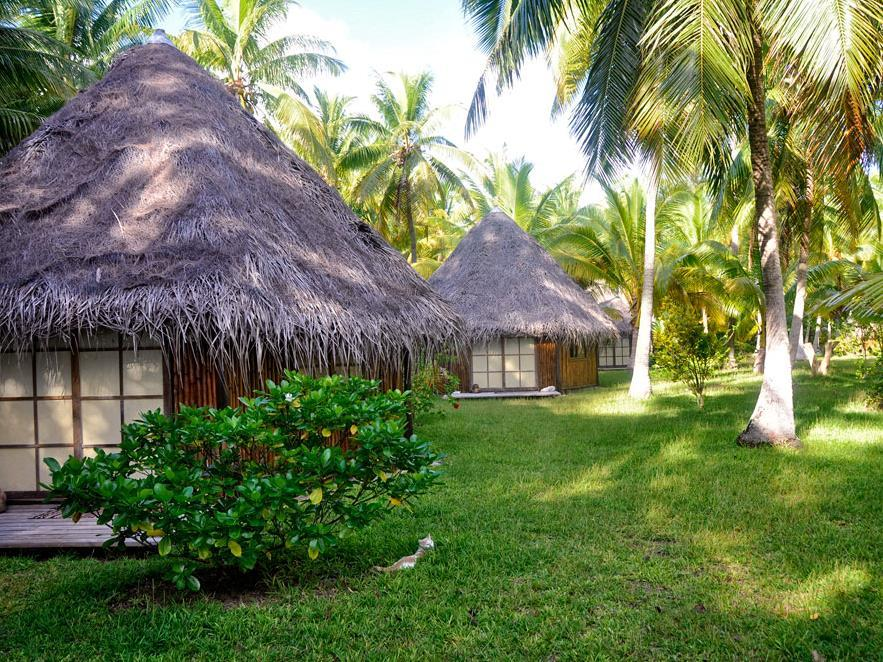 Blue Heaven Island - Hotels and Accommodation in French Polynesia, Pacific Ocean And Australia