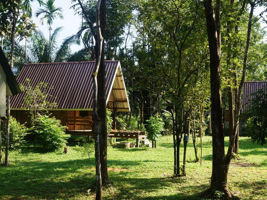 Khao Sok Jungle Resort - Hotels and Accommodation in Thailand, Asia