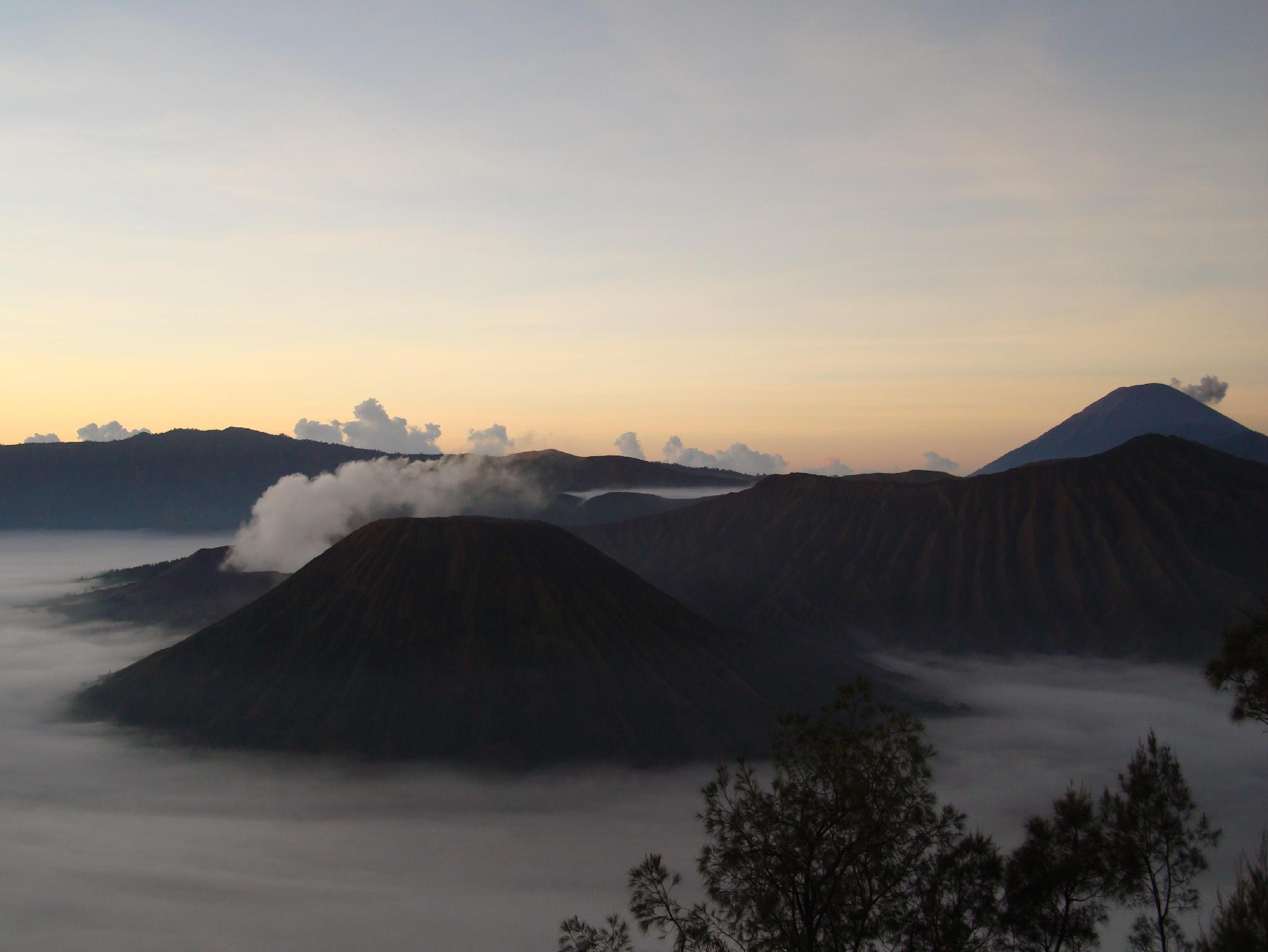 Yog Bromo Homestay - Hotels and Accommodation in Indonesia, Asia