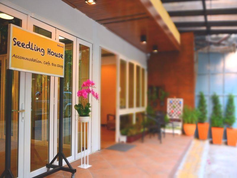 Seedling House - Pattaya
