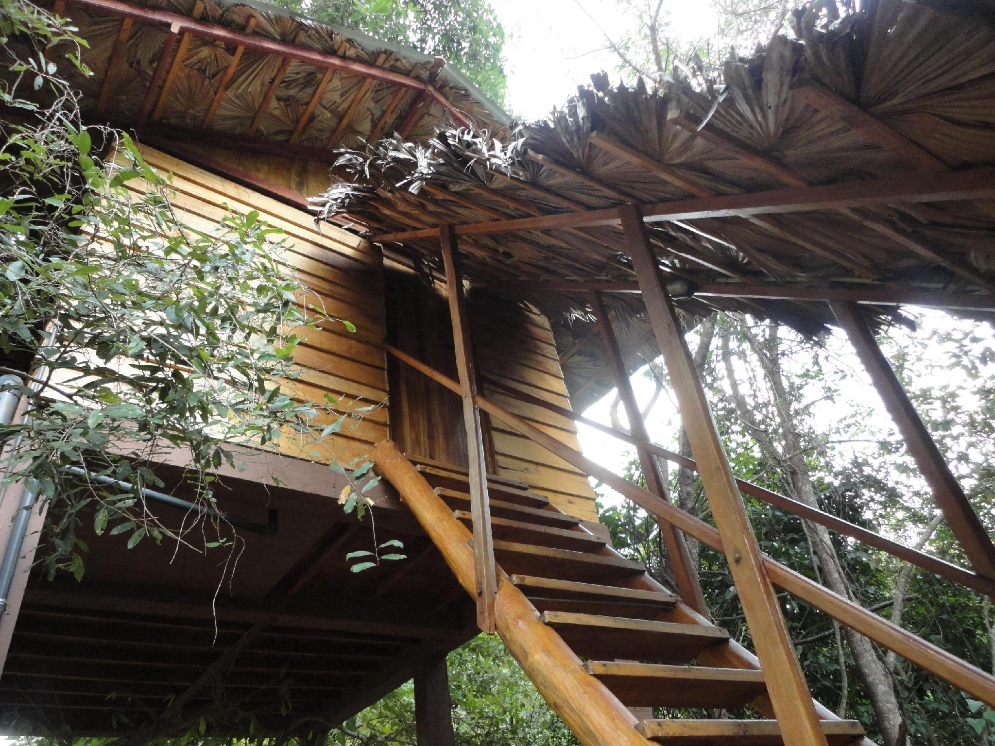 Inn On The Tree - Hotels and Accommodation in Sri Lanka, Asia