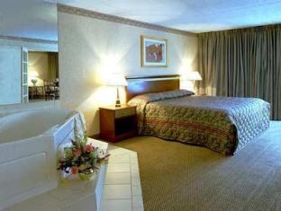 Ramada Inn Bradley Hotel Windsor Locks (CT) - Suite Room