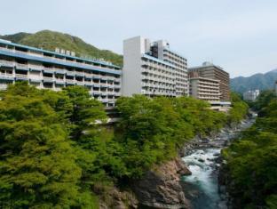 hotel Kinugawa Onsen Hotel