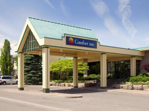 Comfort Inn Clifton Hill Hotel Niagara Falls (ON)