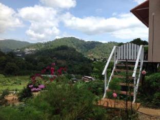 flora hill pongyang resort