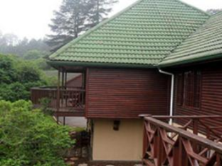 Aloe Ridge B and B and Self Catering