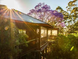 Tamborine Mountain Bed & Breakfast