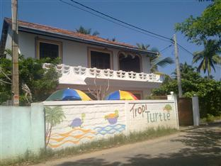 TropiTurtle Guesthouse