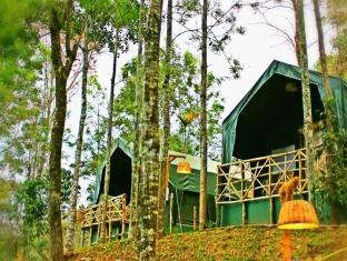 Season7 The Nature Resort - Munnar