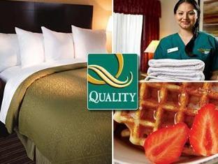 /da-dk/quality-hotel-joao-pessoa-joao-pessoa/hotel/joao-pessoa-br.html?asq=jGXBHFvRg5Z51Emf%2fbXG4w%3d%3d