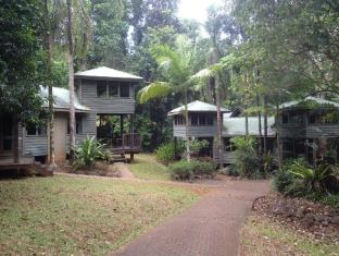 /da-dk/ferntree-rainforest-lodge/hotel/daintree-au.html?asq=jGXBHFvRg5Z51Emf%2fbXG4w%3d%3d