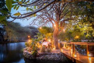 /ca-es/klaserie-river-safari-lodge/hotel/thornybush-game-reserve-za.html?asq=jGXBHFvRg5Z51Emf%2fbXG4w%3d%3d