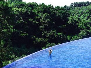 /fr-fr/hidden-cliff-hotel-nature/hotel/jeju-island-kr.html?asq=jGXBHFvRg5Z51Emf%2fbXG4w%3d%3d