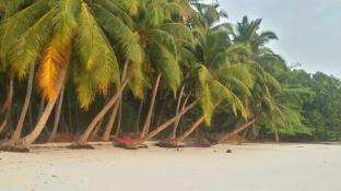/ar-ae/sangri-las-beach-resort-havelock-island/hotel/andaman-and-nicobar-islands-in.html?asq=jGXBHFvRg5Z51Emf%2fbXG4w%3d%3d