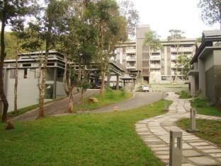 /da-dk/the-mountain-courtyard/hotel/thekkady-in.html?asq=jGXBHFvRg5Z51Emf%2fbXG4w%3d%3d