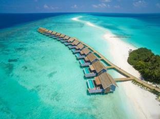/sv-se/kuramathi-island-resort/hotel/maldives-islands-mv.html?asq=jGXBHFvRg5Z51Emf%2fbXG4w%3d%3d