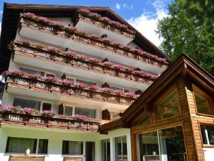 /cs-cz/hotel-jaegerhof/hotel/zermatt-ch.html?asq=jGXBHFvRg5Z51Emf%2fbXG4w%3d%3d