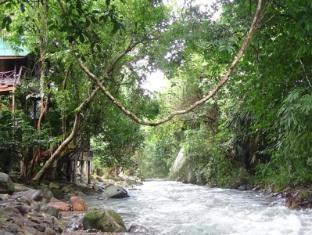/ar-ae/tree-top-river-huts/hotel/khao-sok-suratthani-th.html?asq=jGXBHFvRg5Z51Emf%2fbXG4w%3d%3d