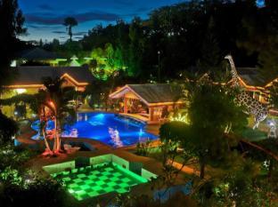 /ja-jp/deep-forest-garden-inn/hotel/palawan-ph.html?asq=jGXBHFvRg5Z51Emf%2fbXG4w%3d%3d