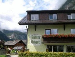 /ar-ae/gasthof-pension-gruner-anger/hotel/hallstatt-at.html?asq=jGXBHFvRg5Z51Emf%2fbXG4w%3d%3d