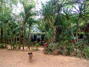Sam's Jungle Guesthouse